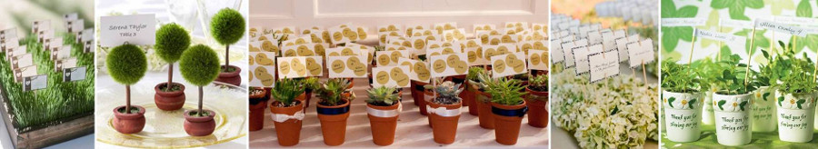 Карточки для рассадки на горшках с цветами